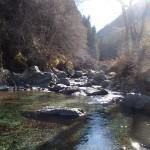 渓流ルアーにおけるテクニック以前の問題とは?おすすめ戦略
