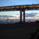 2016 東京湾納涼船は橘丸か?最寄り駅1分のキャンセル待ち必至ツアー