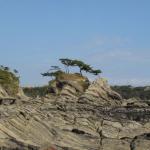 関東の地震予知2015 三浦の活断層を気象庁データから予測!