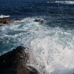 城ヶ島海苔メジナで釣り納め 夕まずめ良型2匹をダイワ小継磯竿小島で
