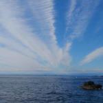 冬晴れの観光名所、城ヶ島公園でメジナに会いに海苔エサ・コマセ釣りに行く
