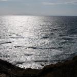 三浦の城ヶ島で海苔メジナ釣り!海苔エサは初心者でもオキアミより釣れるか?