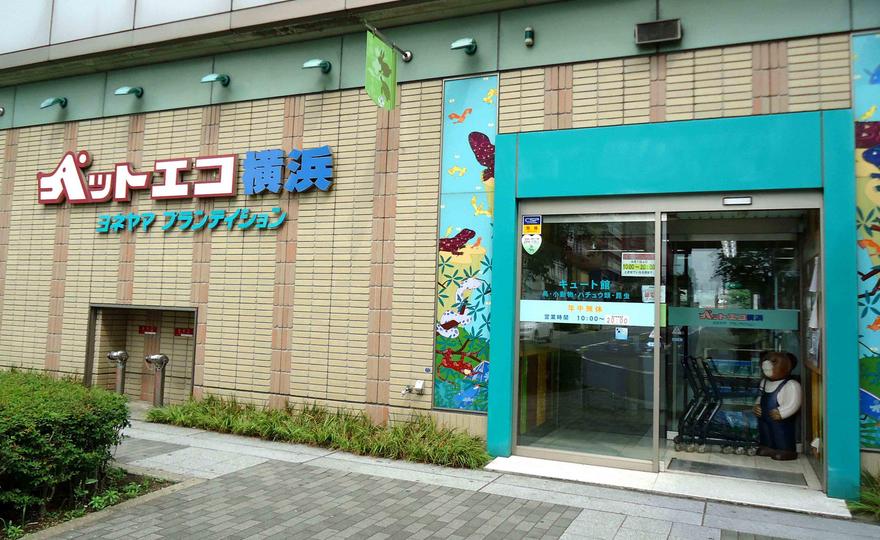 20150812-1