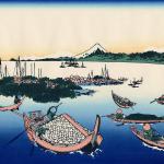 東京五輪の葛西臨海公園で50年ぶりに海水浴解禁!水質や健康への影響は?