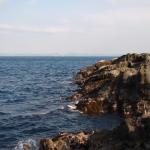 三浦半島の磯釣りのポイントは?比較的アクセスしやすい場所【三浦半島磯釣り入門】