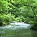 渓流ルアーのリールでおすすめは?小さくて軽いのが一番!