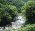 【特集】渓流ルアー入門、最初の一匹GETまでの5つのポイント